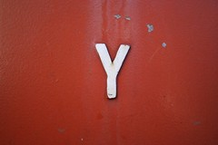 One Letter // Y