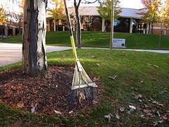 Rake Them Leaves
