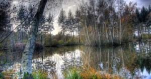 Bela Natureza