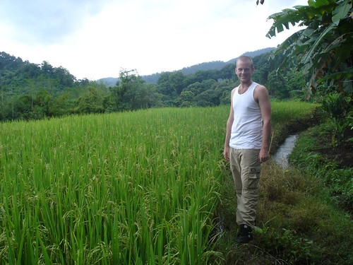 The Obligatory Rice Paddy Shot - Chiang Mai Provence, Northern Thailand
