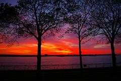 Sunset November 5, 2006
