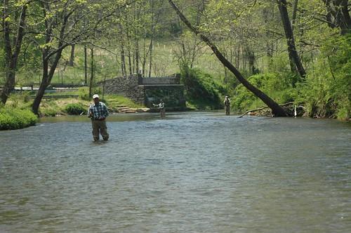 Guiding Fly Fishing Trips on the Gunpowder River