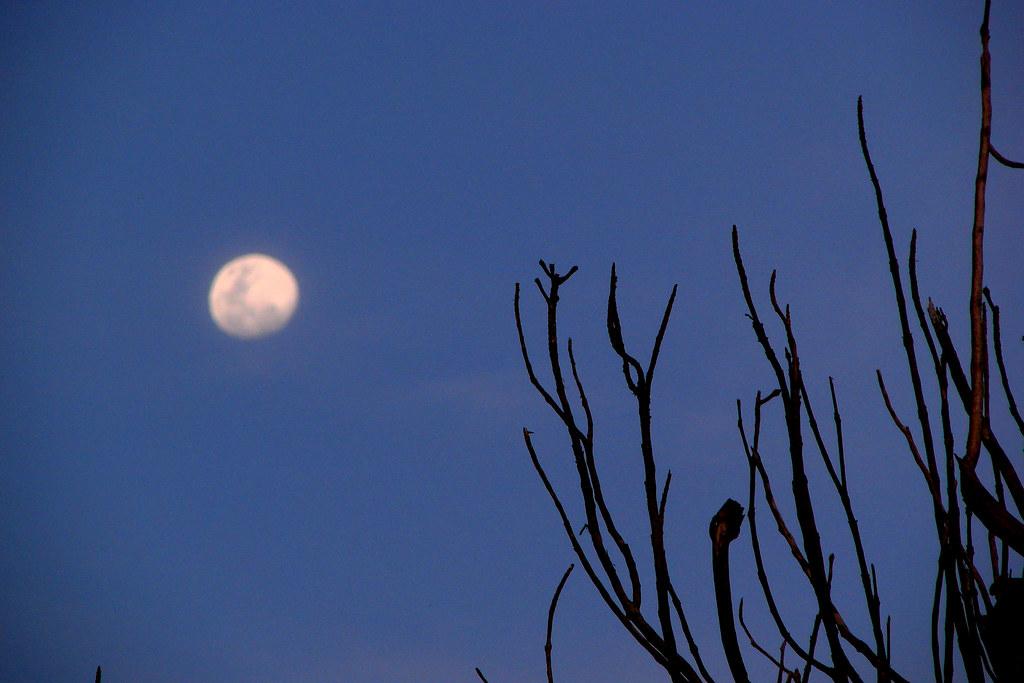 Glowy, glowy moon