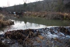 beaver reservoir