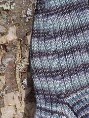 Cable Rib Closeup