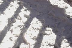 araiya_snow4.jpg