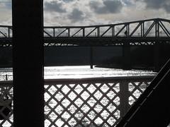 Tyne Bridges