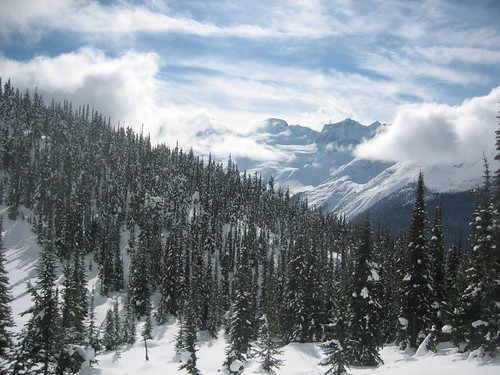 Rogers Pass - Avalanche Mtn