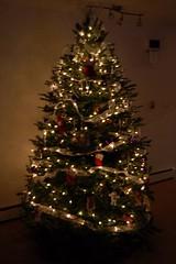 Christmas Tree a Lit