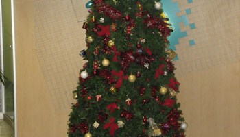 Christmas Tree at First National Bank in Sandton City