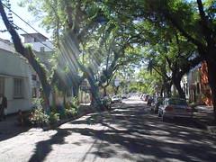 rua olavo bilac