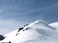 virgin_snow