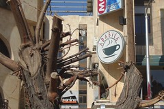 Arabica Cafe In Aziziye Street