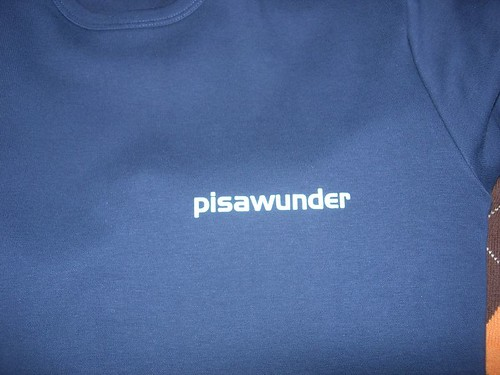 Pisawunder