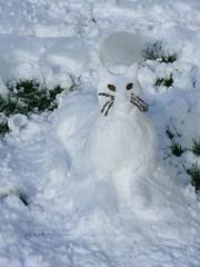 Snow Cat von B.D.s World