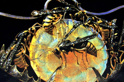 Wasp close