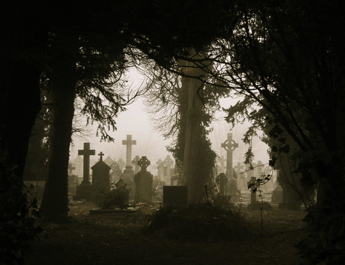 Foggy Graves Through Trees by ShotsAtRAndom.
