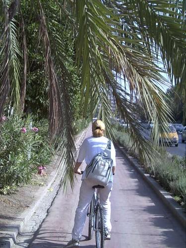 Carril-Bici de Conde Vallellano