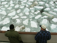 Arctic Sea Ice (Summer 2004)