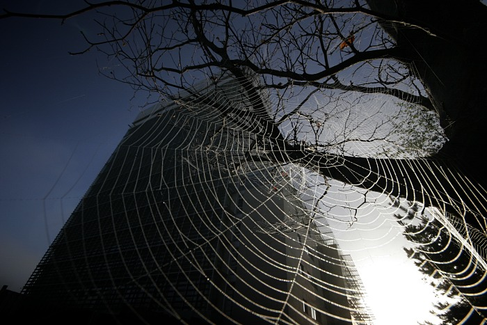 The Cork County Hall and the web