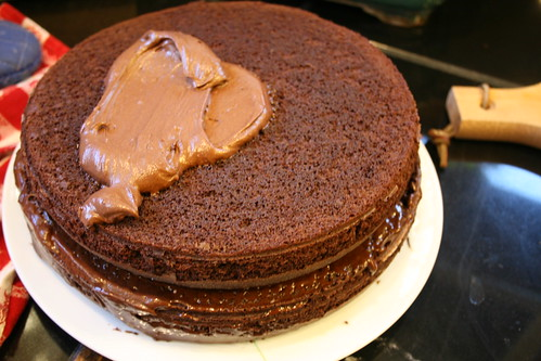 chocolate cake + frosting