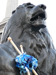 Lion with yarn and needles