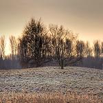 Winter in Alt-Lübeck
