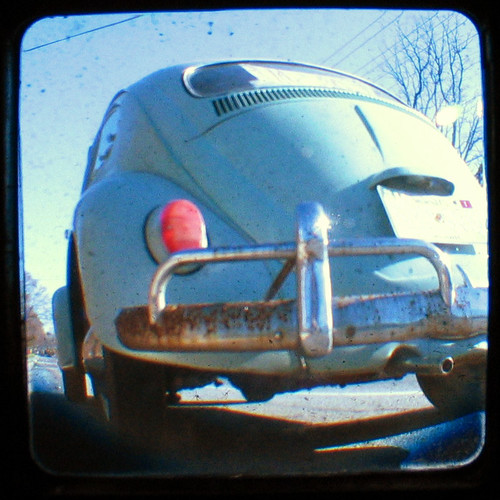 beetle butt