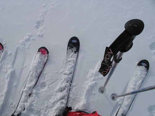 skireis