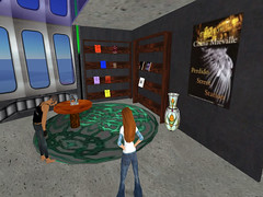 Info Island Sci_fi library