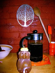 Poor Honey Bear