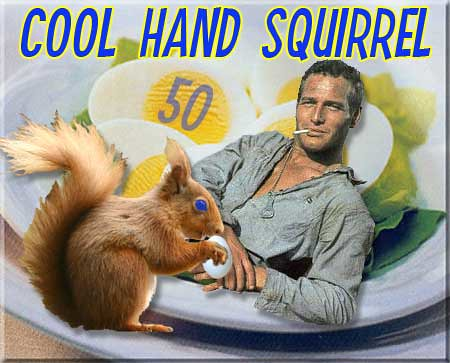 Paul Newman and the Squirrel Queen share hardboiled eggs