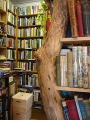 Booktree & Biography Corner