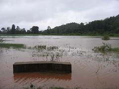 Kollibacchalu Dam -Malenadu Heavy Rain Effects Photography By Chinmaya M.Rao   (110)