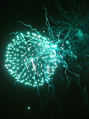 New Year's Eve Prospect Park Fireworks