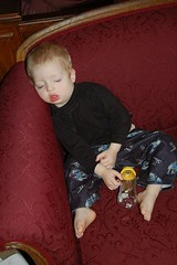 Sleeping Upright ...