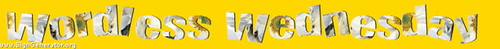Wrdwedlogo(yellow)