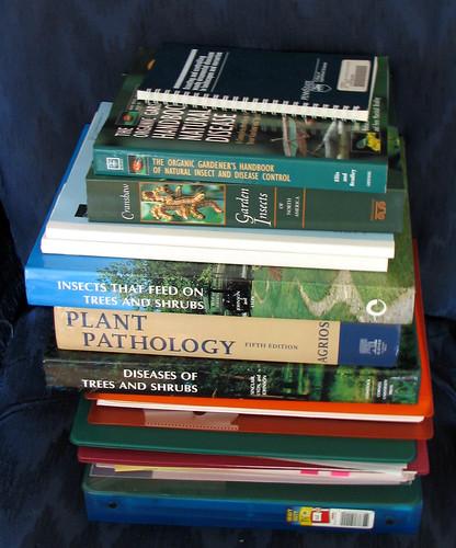 2006-12-29 006 Books