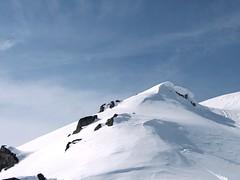 Virgin Snow redux