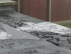 Frozen Flat Roofs