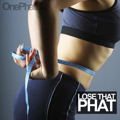 Lose That Phat cover
