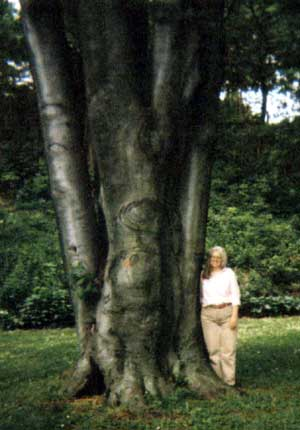 Pam_Mt_Hope_Cem_May_25_2004