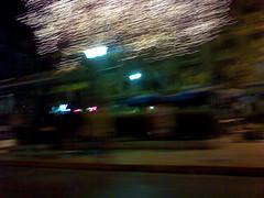 Public tree lights