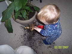 My Son & The Plant