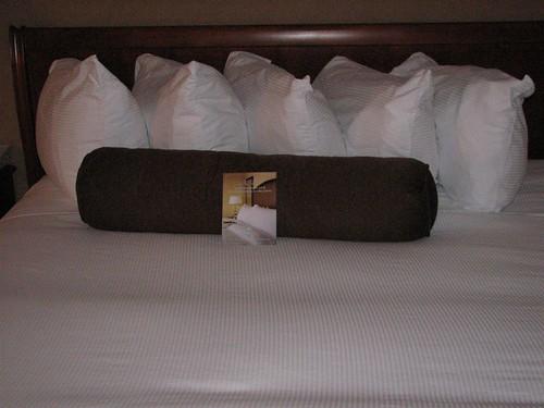 hiltonian pillows