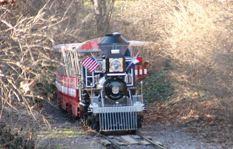 Train, St Louis Zoo