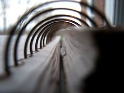 The Spiraling Shape