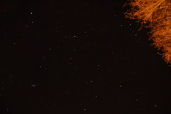 Stars in the tuscan sky