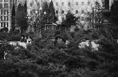 Leica25_30p.jpg