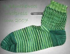 elodea 1st sock finished
